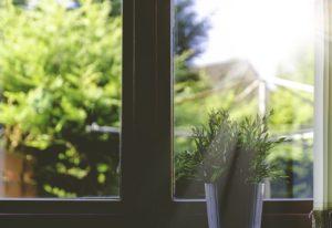 sprzątanie okien